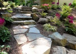 my favorite tips for drought tolerant landscaping