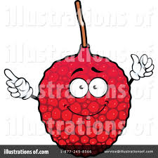 lychee fruit drawing lychee clipart pencil and in color lychee clipart