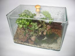 desk terrarium best home furniture decoration