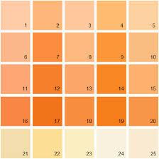 orange paint colors modern dining room decora 21773 pmap info