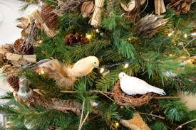 Natural Christmas Tree For Sale - it u0027s beginning to look a lot like christmas u2026 sanderling resort