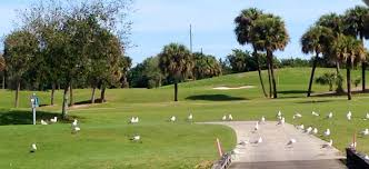 golf on florida u0027s treasure coast isn u0027t just for the touring pros