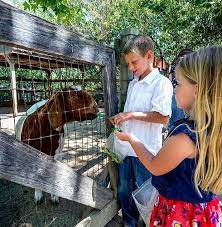 Avila Beach Barn Avila Valley Barn San Luis Obispo Ca Farm Animals Page