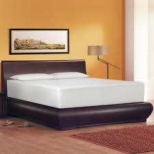 memory foam futon mattress tips jeffsbakery basement u0026 mattress