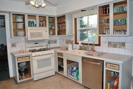 Cabinet Kitchen Ideas Open Cabinet Kitchen Types Charming Charming Open Cabinet Kitchen