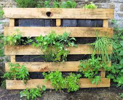 How To Plant Vertical Garden - secret garden club growing up the diy vertical garden