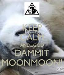 Moon Moon Memes - god dammit moon moon tumblr keep calm and god dammit moonmoon