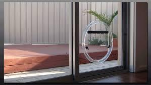 Glass Door With Dog Door Built In by Automatic Solar Dog Door Opener