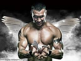 wwe randy orton wallpapers 62 wallpapers u2013 adorable wallpapers