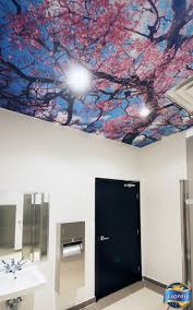 home design expo home design expo center cielo ceiling print mercial fice home design