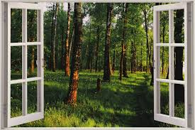 huge 3d window view enchanted forest wall sticker mural film decal shop categories