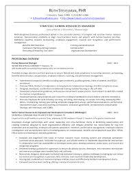 Hr Recruitment Resume Sample 100 Resume Sample Human Resources Generalist Bell U0027s Hr