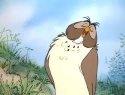 owl winnie pooh disney wiki fandom powered wikia