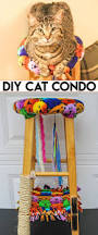 Homemade Cat Hammock by Diy Cat Condo Made From An Old Stool Want To Create A Cat Tree