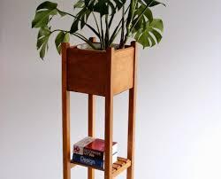 indoor flowering plants best indoor plants for winter grow a fragrant windowsill spa
