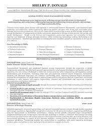 Human Resources Manager Resume Sample Senior Director Resume