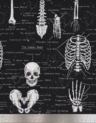 skeletons halloween timeless treasures fabric glow in the dark skeletons halloween
