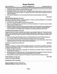 exles of professional summary for resume exle of resume title 99 images resume title exles for