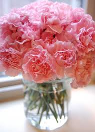 affordable flowers affordable flowers for s day or any day carnation
