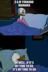 Meme Donald Duck - donald duck tornado warning meme lol halarious pinterest
