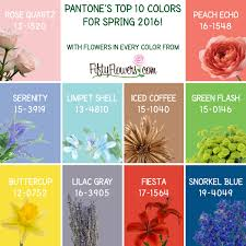 Pantones by Pantone U0027s Top 10 Colors For Spring 2016 Fiftyflowers The Blog