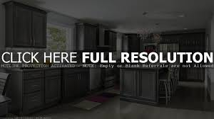 Kitchen Cabinet Wood Stains Detrit Us by Vanity Cabinet Doors Lowes Sizes Size Chart Gammaphibetaocu Com