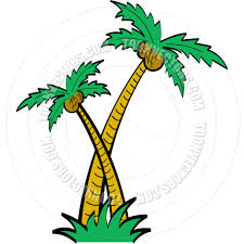 cartoon palm trees vector illustration by clip art guy toon