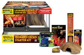 leopard gecko lighting at night exo terra leopard gecko starter kit starter kit for leopard geckos