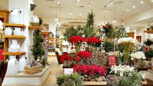 get in the mood at stoneridge mall knows it all