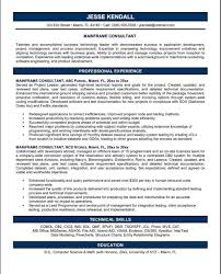 sle consultant resume management consultant resume sle free cv template project