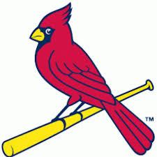 canfield hs baseball canfieldbasebal twitter
