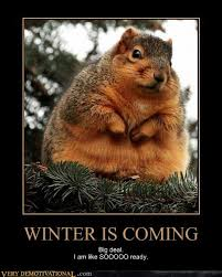 Winter Is Coming Meme - winter is coming very demotivational demotivational posters