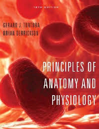 Best Anatomy And Physiology Textbook Principles Of Anatomy And Physiology By Gerard J Tortora