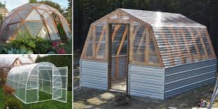 Backyard Green House by Awesome Diy Greenhouse Also Backyard Greenhouse Diy Diy