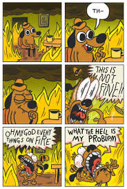 Everything Is Fine Meme - 2016 is going so poorly that we broke the this is fine dog meme