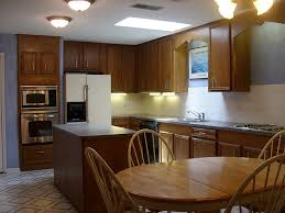 Kitchen Cabinet Lights Furniture Traditional Kitchen Design With Dark Kitchen Cabinets