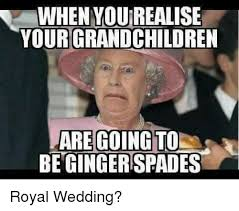 Wedding Meme - when you realise yourgrandchildren be ginger spades wedding meme