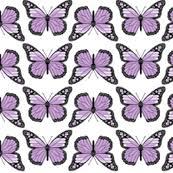 purple butterfly easy does it giftwrap p d frasure spoonflower