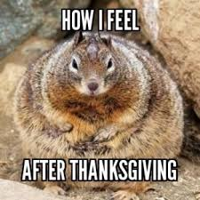 how i feel after thanksgiving picture