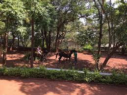 holiday home rock side panchgani india booking com