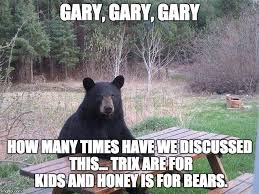Silly Rabbit Meme - bear at picnic table memes imgflip