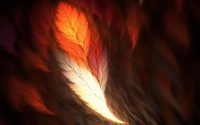 phoenix feather 7019258