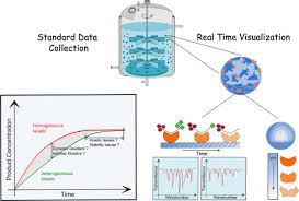 advanced characterization of immobilized enzymes as heterogeneous