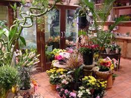 florist shops aquesta imatge magrada per la difarencia de color i organització