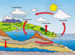 Water Cycle Worksheet Pdf Msttpa Go Tech Licensed For Non Commercial Use Only Water Cycle