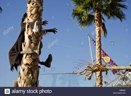 crashing halloween witch palm tree hugger yard prop in port of