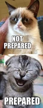 Happy Cat Meme - grumpy cat vs happy cat weknowmemes generator