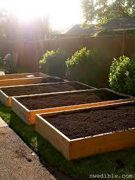 vegetable garden planters gardening ideas