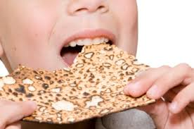 seder matzah a sensory friendly passover seder friendship circle special