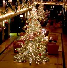 Decorate Christmas Tree Professionally by 521 Best Christmas Trees Images On Pinterest Merry Christmas